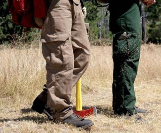 Invasive plant seeds being introduced on a firefighter's pant-leg.