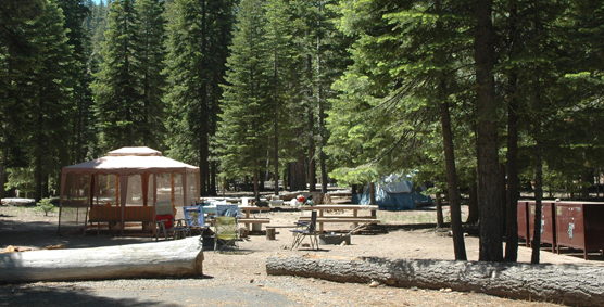 Campsite at Lost Creek Campground