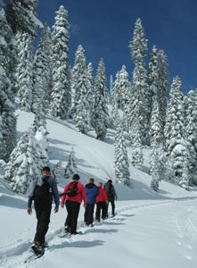 A ranger-led snow walk heads to Sulphur Works.