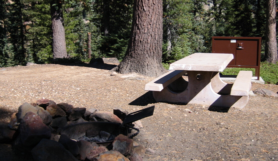Campsite at Southwest Walk-in Campground