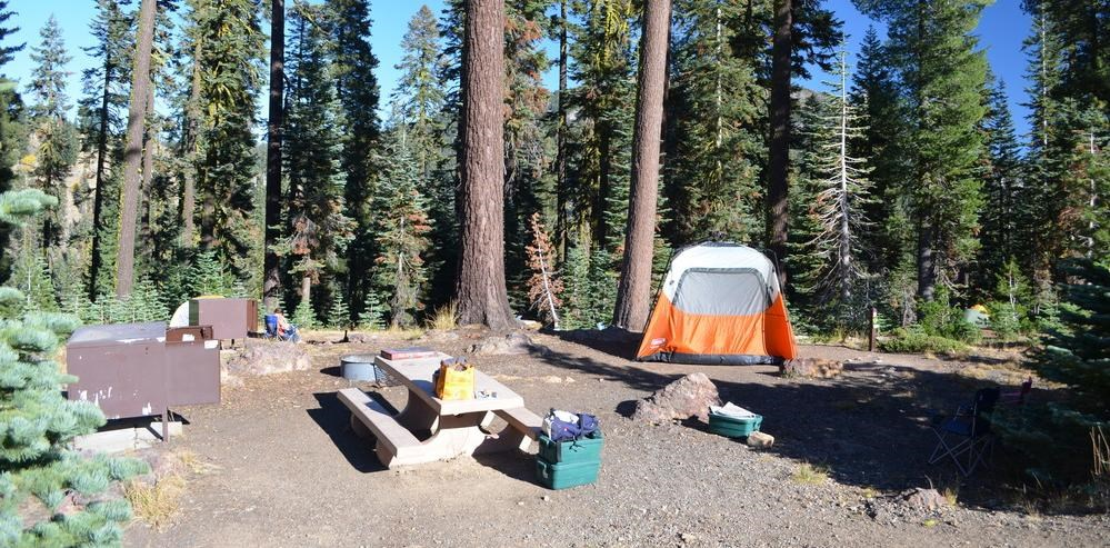 a typical campsite with a tent, table, fire rings, and bear proof locker