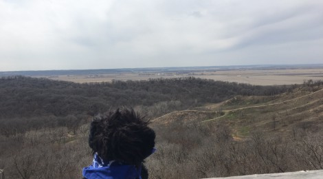 Stuffed dog overlooking river valley