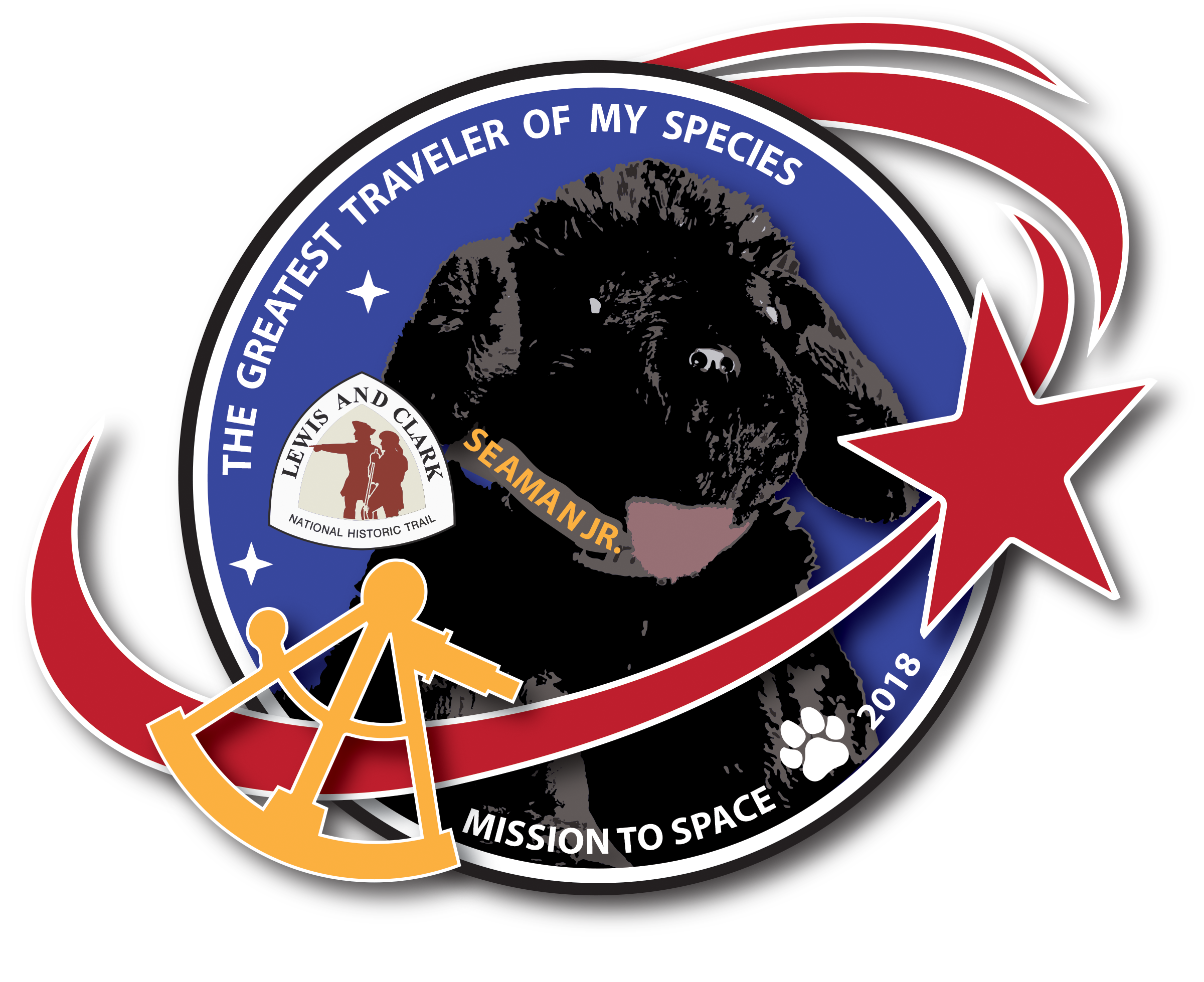 Patch for Seaman Jr space mission