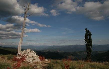 The Bitterroot Mountains, with cairn, leafless tree trunk, slender evergreen, and view of mountains behind.