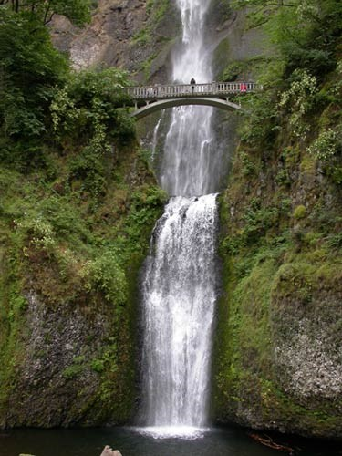 Multnomah Falls courses down a rock face, under a bridge and into a pool.
