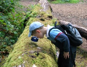 Young student looking for bugs on a log.