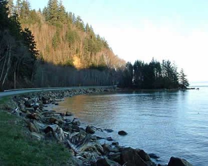This is a photograph of Clark's Dismal Nitch at present-day. The shoreline has changed over time from human influence as well as natural influences as can be seen most evidently by the highway and rip-rap along the shoreline. Courtesy of Cliff Vancura of Otak, Inc.