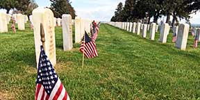 American flags in the Custer National Cemetery
