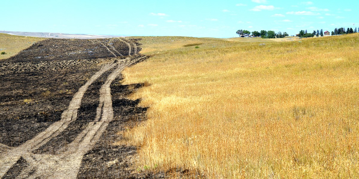 Medicine Tail Coulee Fire