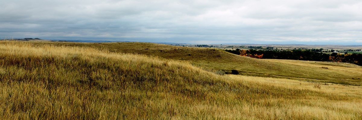 A pano of grasslands and clouds
