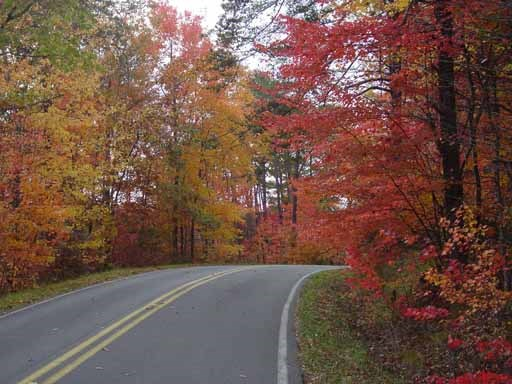 AL Hwy 176 / Scenic Drive in the fall season