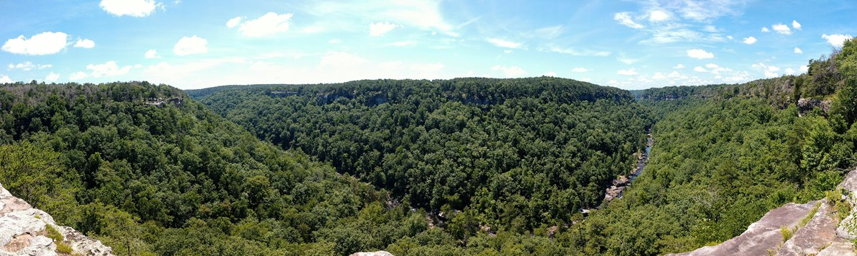 View of the lush green canyon with a bend in the river from a canyon rim overlook.