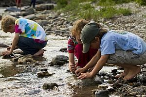 Kids play in a river during one of Denali's Kids Camps