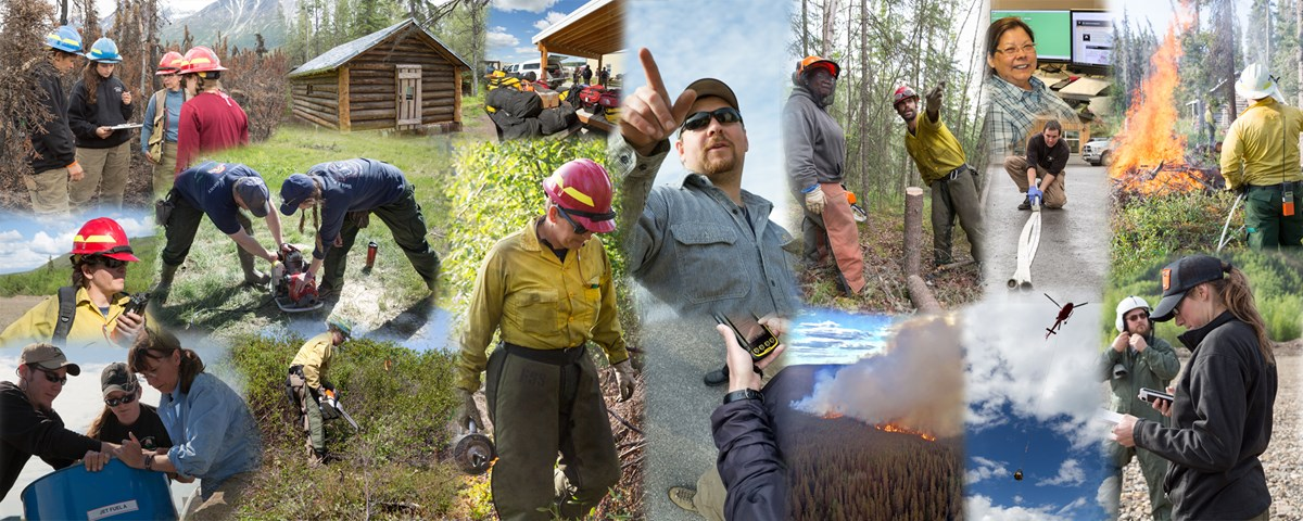 A photo collage of NPS wildland fire management staff.