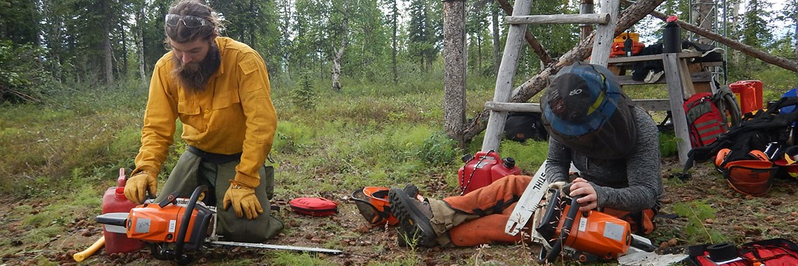 Two fire staff personnel clean, tune and sharpen chainsaws near a cabin.