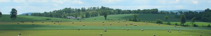 fields with rolling hills and hay bales