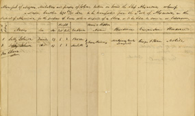 Ship's manifest listing slaves on board.