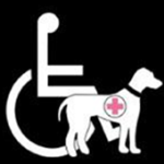 A handicapped logo with a service dog