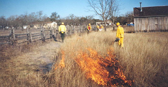 A prescribed burn takes place at the Johnson Settlement