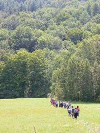 Seen from a distance, a group of students walks single-file through a grassy pasture toward green hills beyond.
