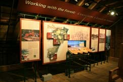 The Mount Tom Forest: A Legacy of Stewardship on exhibit in the Woodbarn.