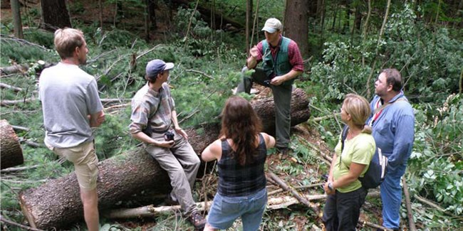 Sustainable Forestry discussion