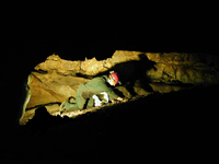 Caver crawling in passage like those on the Introduction to Caving Tour