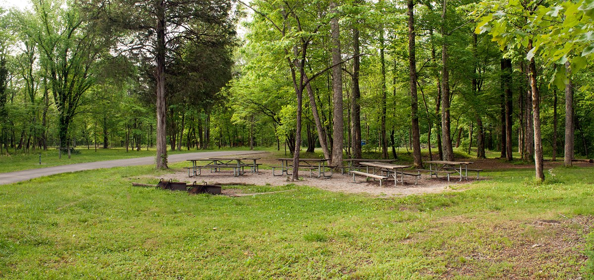 A campsite at Maple Springs Group Campground with picnic tables and two fire rings in the woodland.