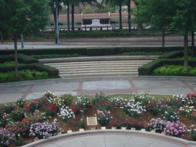 Front view of MLK, Jr. Rose Garden