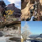 Seasonal collage of Mesa Verde National Park images