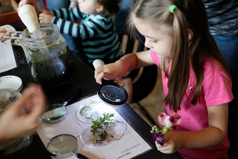 Children looking at plants through a magnifier