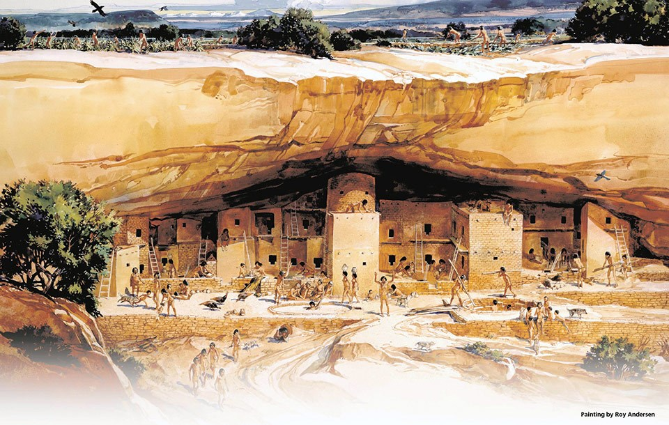 Illustration of Ancestral Pueblo people living in Spruce Tree House ca 1250.