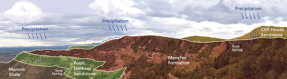 Illustration showing how seeps and springs are created. Precipitation from above falls onto Cliff House or Point Lookout sandstone and percolates down until it hits a shale layer such as the Menefee Formation, and emerges as a seep spring.