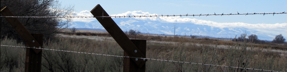 View through the barbed wire from inside the camp looking east.