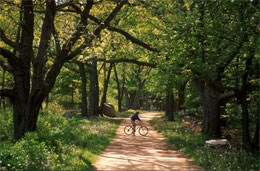 Battle road trail 1 Bostons Best Family Friendly Bike Paths