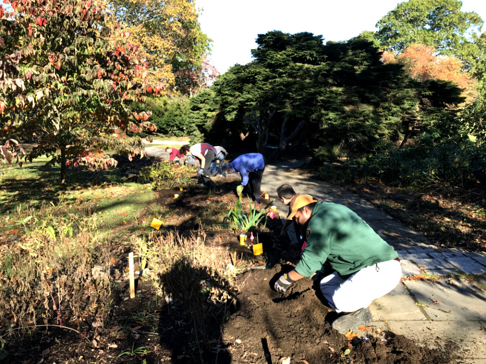 Volunteer stewards work the Buttrick Garden at North Bridge, Concord