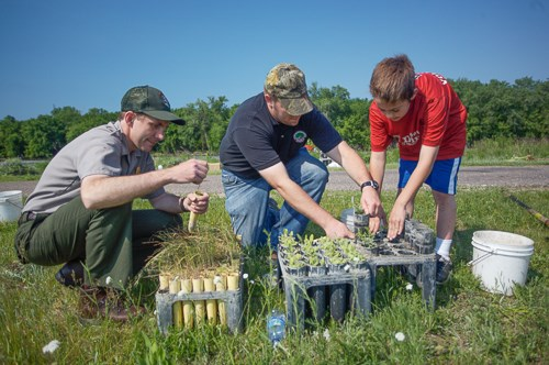 Volunteers assist a park ranger with plantings.