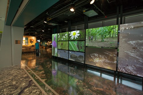 A large wall of video screens welcome visitors to the visitor center.