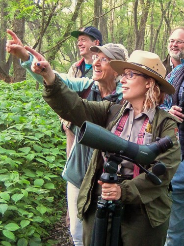 A birding trip participant and ranger point at a bird in a tree.