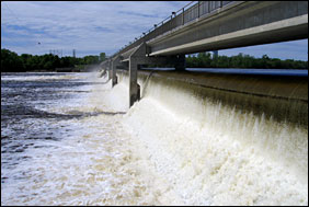 Water spills over the Coon Rapids dam beneath a blue sky and tree-lined shorelines.