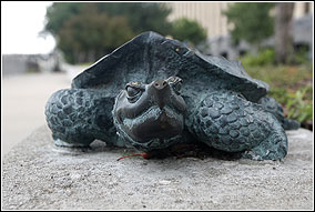 A small bronze statue of a Mississippi River snapping turtle rests on a short wall.