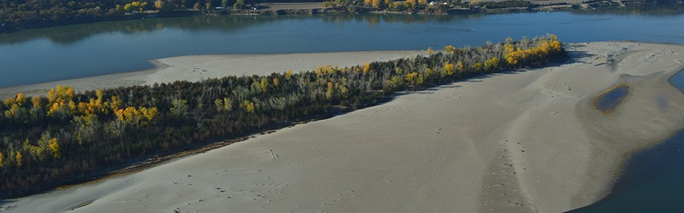 An aerial view of Goat Island in the autumn season.