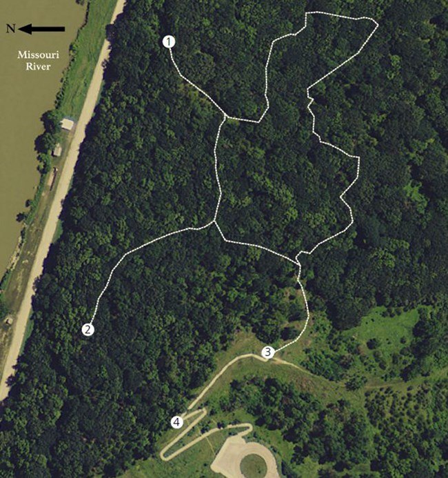 Green background with a white line traces the path for the Mulberry Bend Overlook nature trail.