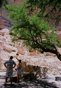 Visitors on the trail at Montezuma Castle