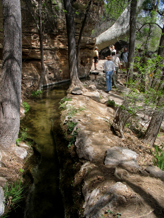 Montezuma Well Outlet Trail