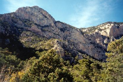 Wilderness Mojave National Preserve U S National Park
