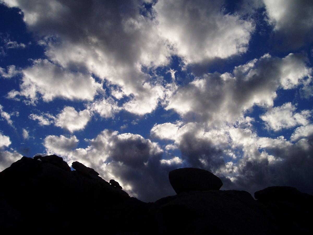 Operating Hours & Seasons - Mojave National Preserve (U S