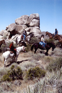 Horses are welcome at Mojave National Preserve!