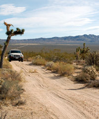 photo of Mojave Road