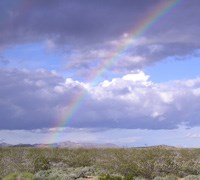 photo of rainbow over the desert